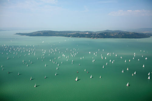 Blue Ribbon sailboats' competition on Lake Balaton