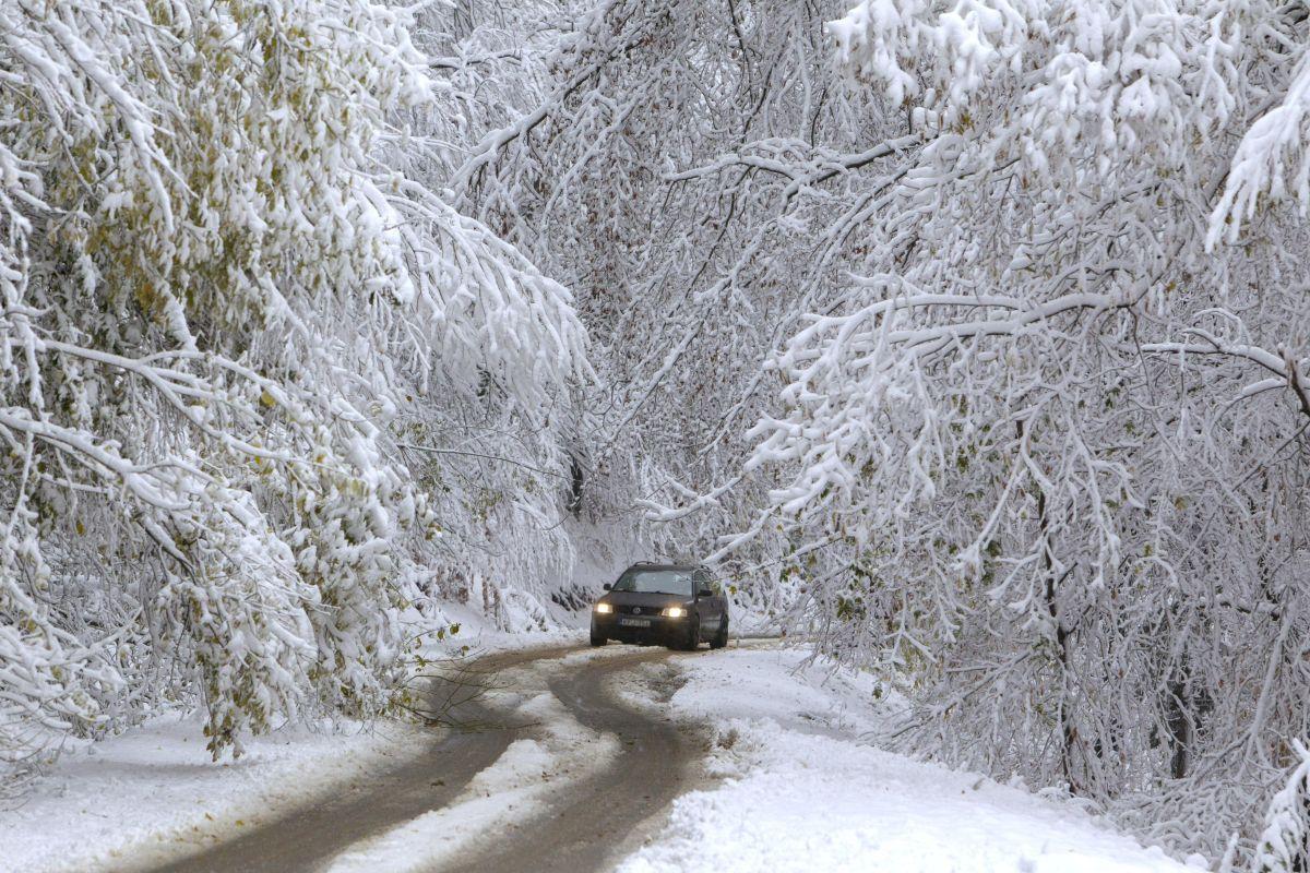 Snowing in West Hungary, near Velem village (Photo Gyorgy Varga)