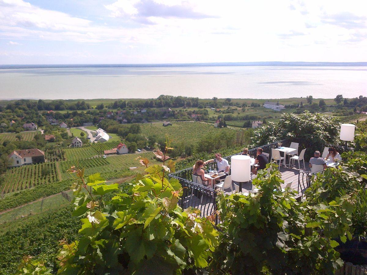 Badacsony, Hungary, Laposa Winery
